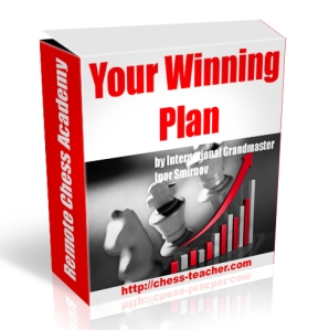 you winning plan
